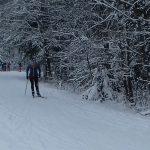 trasy biegowe_Zakopane