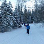 20161230_biegi_narciarskie_zakopane