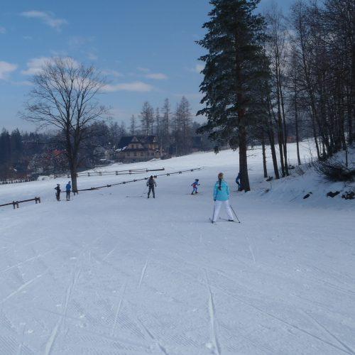narciarwtwo biegowe w Zakopanem