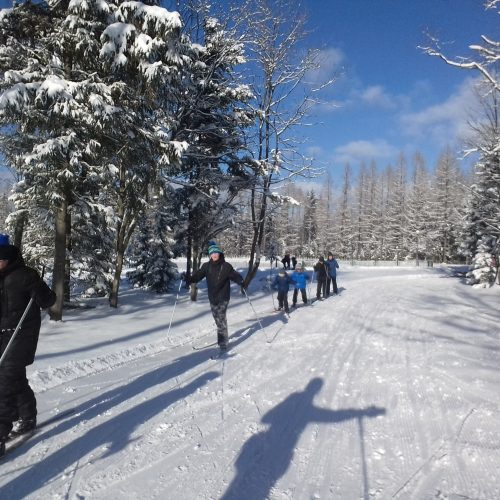 kurs narciarstwa biegowego