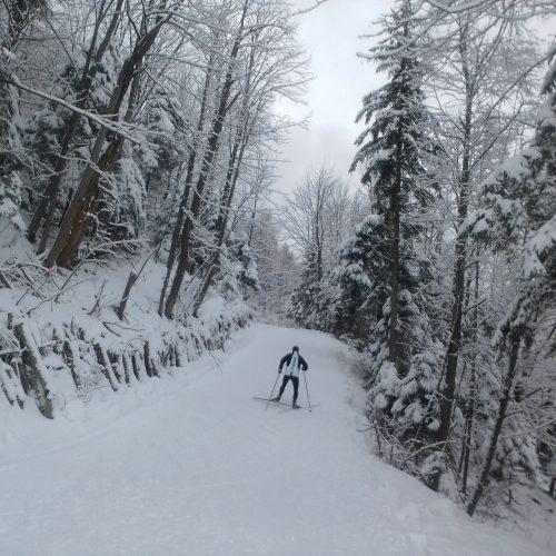 trasa biegowa_COS_03_02_18